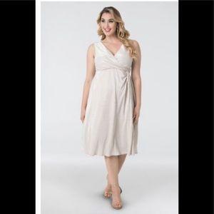 Kiyonna Spotlight Cinch Dress 1X plus